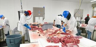 high quality butcher machines